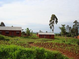 Tanzania 006